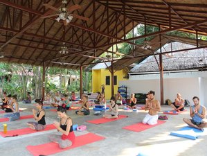 29 Days Ayurvedic Juice Detox and Yoga Retreat in Thailand