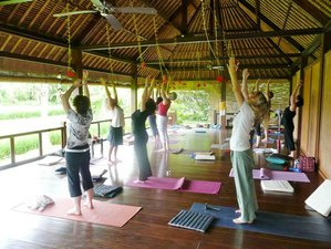 13 Days Cultural Adventure and Yoga Retreat in Bali
