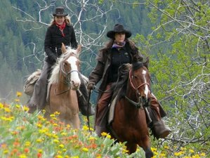 7 Day Wildlife Tracking on Horseback in South Chilcotin Mountains, British Columbia