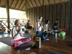 8 Days Live the Life of Your Dreams New Year's Meditation and Yoga Retreat in Nosara, Costa Rica