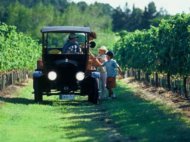 4 Days Wine and Cheese Trails Culinary Tours in Uruguay