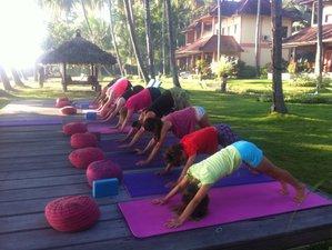 8 Tage Yoga, Sound und Wellness Retreat im Norden von Bali