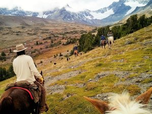 6 Days Country Package Dude Ranch Vacation in British Columbia, Canada