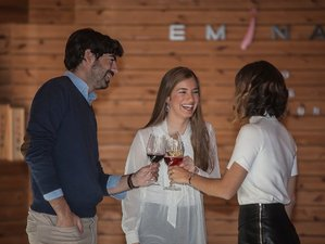 4 Days Wine and Gastronomy Tour in Ribera Del Duero and Rueda, Spain