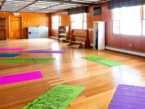 4 Days Healing Forces of Harmonic Sounds and Vibrations with Qigong in Massachusetts, USA