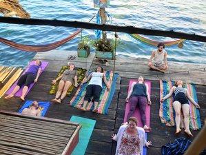 4 Days Juniper Moon Winter Yoga Retreat in Florida, USA