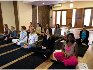 15 Days 100-Hour Yoga Teacher Training in India