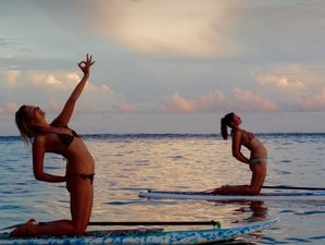 7 Days Wildcrafted Island Yoga Retreat in Fiji