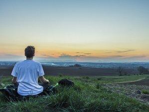 8 Day Silent Meditation Retreat The Buddhist Path to Awakening in Coromandel