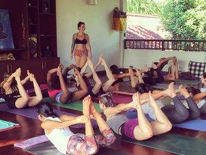 14 Days 100-Hour Yoga Teacher Training in Mexico