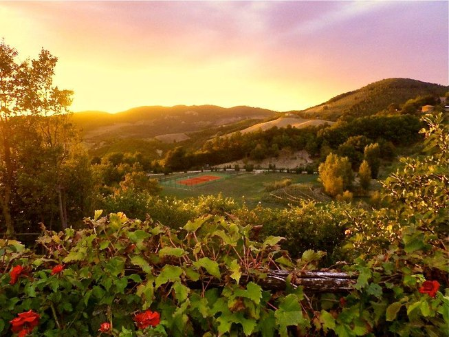 9 Days Women's Food and Wine Vacations in Italy