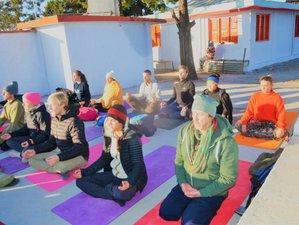 8 Days 50-Hour Pranayama Teacher Training and Yoga Retreat in Rishikesh, India