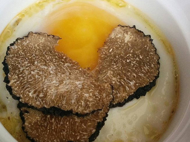 5 Days Truffle Experience in Legendary Transylvania