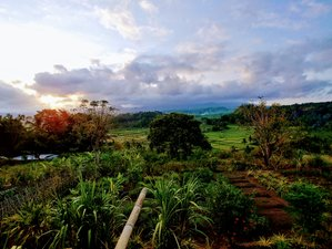 14 Days Nature Adventure Journey and Qi Gong Training in Bali