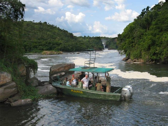 22 Days Birdwatching Safaris in Uganda