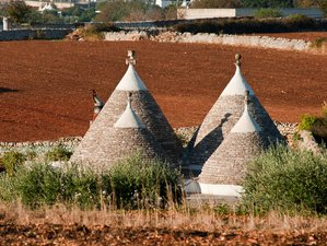8 Days Self-Guided Walking Tour in the heart of Apulia, south Italy: from Alberobello to Ostuni