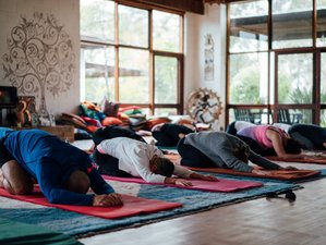 5 Days Meditation and Yoga Retreat in New South Wales, Australia