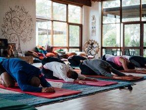5-Daagse Meditatie en Yoga Retraite in New South Wales, Australië