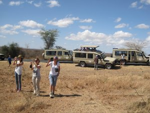 8 Days Big Five Wildlife Safari in Tanzania