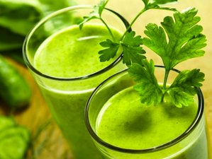 4 Days Herbal Juice Cleanse and Yoga Retreat in Bali