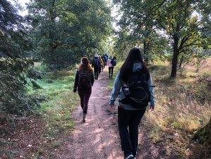 3-Daagse Yoga en Stilte Retreat in de Natuur in Uffelte, Drenthe