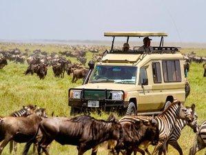 14 Days Wildlife Kenya Safaris and Beach Holidays