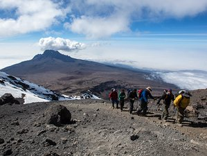 12 Days Kilimanjaro Trek and Wildlife Safari in Tanzania