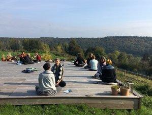 4 jours en week-end arbre intérieur, yoga, nature et créativité à Fatouville-Grestain, Normandie