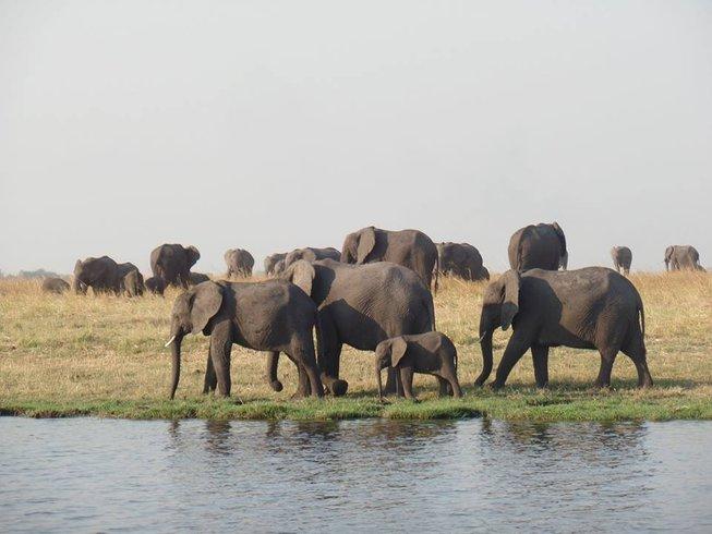 3 Days Victoria Falls Safari in Zimbabwe