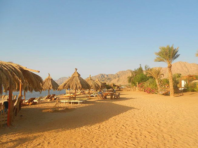 8 Days Meditation and Yoga Retreat in Nuweiba, Egypt