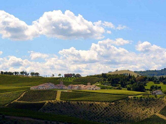 2 Days Romagna Wine Tasting Holiday in Italy