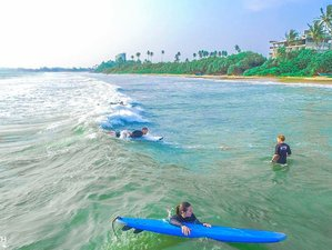 8 Days Surf Camp in Weligama, Matara District, Southern Province, Sri Lanka