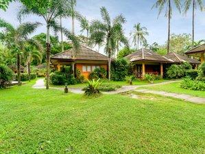 7 Tage Seelen Nährender Rohkost Detox und Yoga Retreat auf Koh Samui, Thailand
