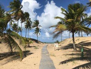 8 Day Advanced Surfari Tour in Bahia