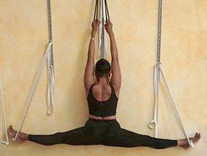 8 Days Annual Yoga Retreat in Saint Helena, California