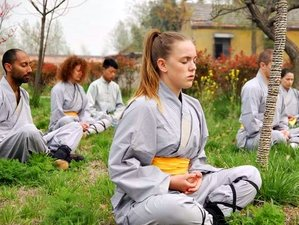 3 Months Shaolin Kungfu, Tai Chi & Wing chun Training at Maling Mountain, Xinyi, Jiangsu, China