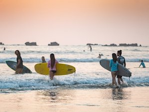 11 Day Surf Guidings Package in Nosara, Guanacaste