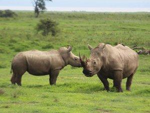 11 Days Amazing Safari in Kenya and Tanzania