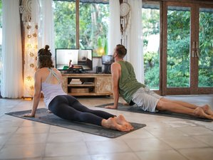 28 Day Online 200-Hour Meditation and Yoga Teacher Training Course