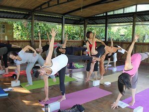 16 Days 200-Hour Yoga Teacher Training in Taiwan