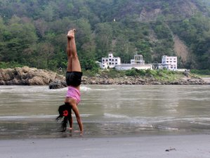 29 Days 200-Hour Ashtanga Vinyasa Yoga Teacher Training in India