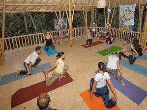 11 Days Bikram and Hatha Yoga Retreat in Bali