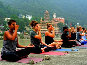 29 Days 200 Hours Comprehensive Hatha and Vinyasa YTT Rishikesh