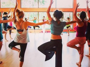 6 Días Retiro de Yoga, Artes Meditativas y Tantra de Cachemira | Iyengar, hatha, vinyasa en Gredos