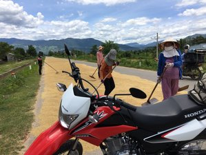 7 Days JJ's Mystery Motorcycle Tour in Vietnam
