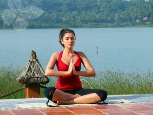 15-Daagse Kerala Yoga Retraite in Fragrant Nature Backwater Resort