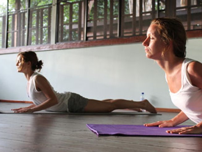 8 Days Yoga Retreat in Borneo Rainforest, Malaysia