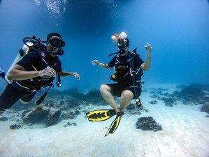 2 Tage Freitauchen für Fortgeschrittene mit Toller Unterwassersicht in Kata Beach, Phuket
