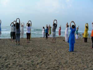 21 Days Pilgrimage Yoga Retreat in India