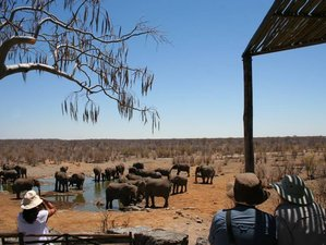 12 Days Budget Zambia and Namibia Safari
